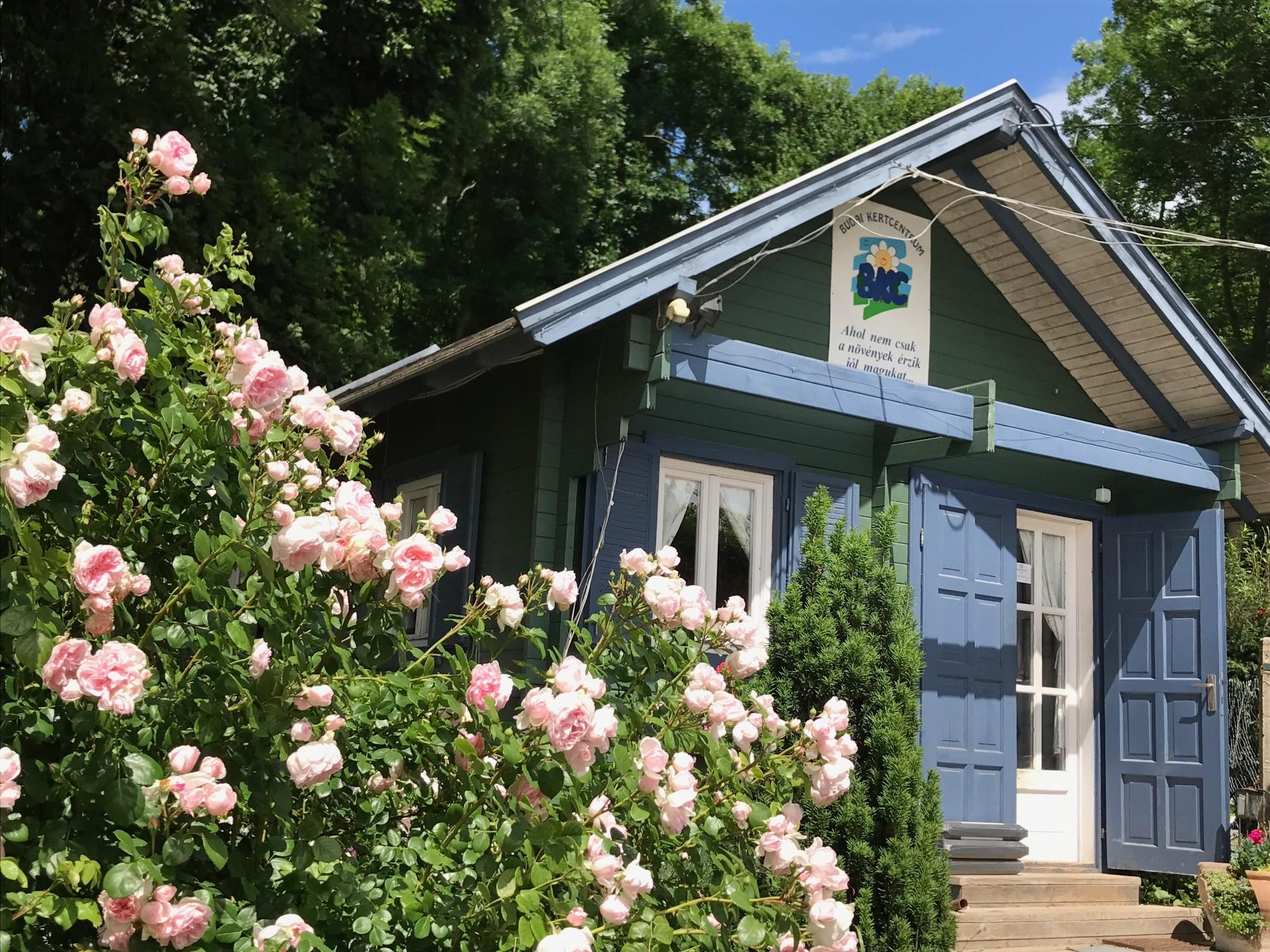 Kertészet - Budai Kertcentrum Kft